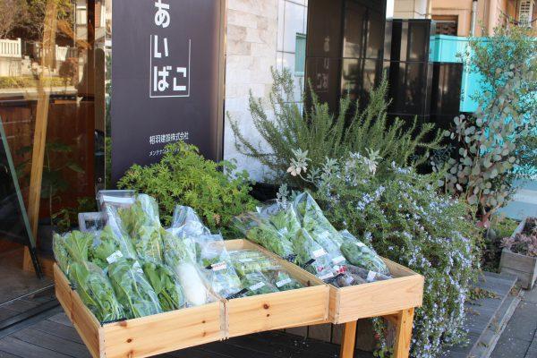 小山菜園場のあいばこ野菜曜日