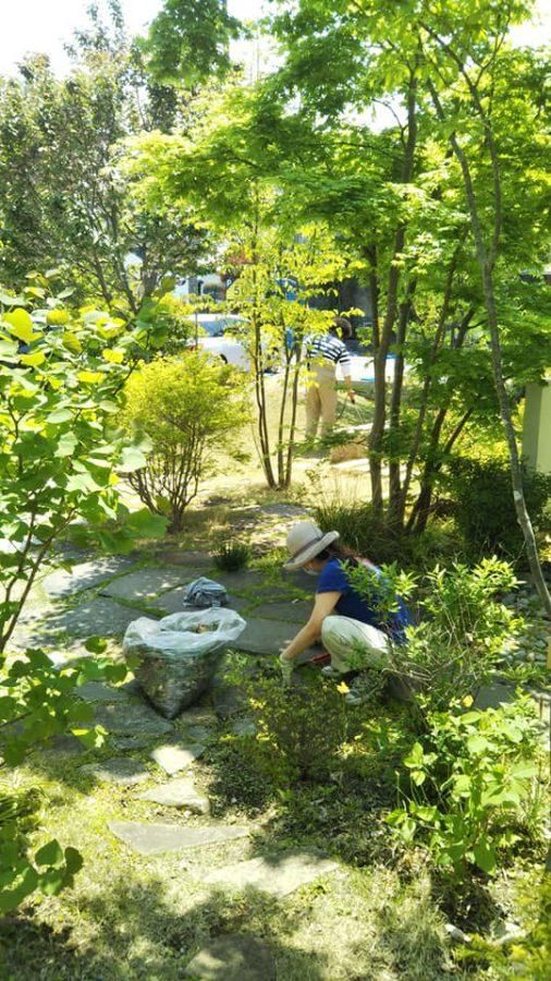 新緑美しいつむじのお庭です。