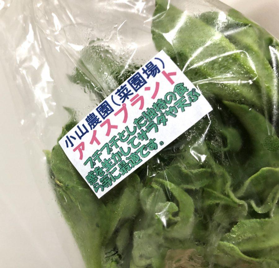 つむじ市にきたらトライしたい珍しいお野菜!昨夜は天ぷらに挑戦しました。