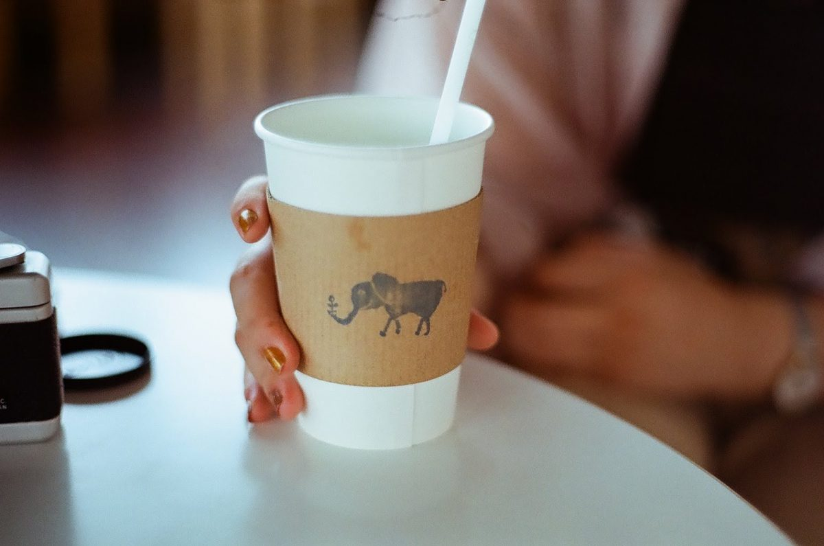 フィルムを現像しました。ゾウさんの絵がかわいいカフェのコップ