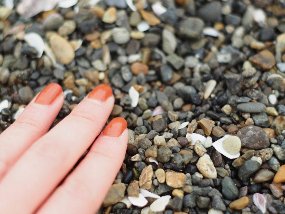 海辺の石って一つ一つ質感が違って可愛いですね