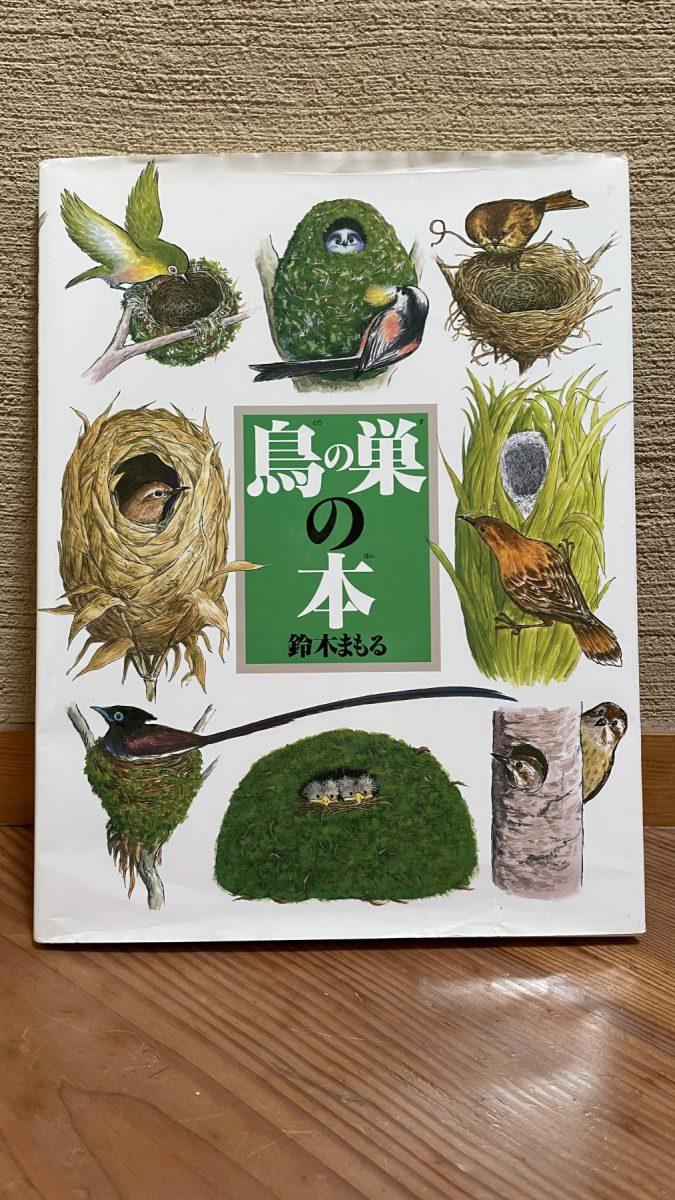 鳥の巣といっても様々です。