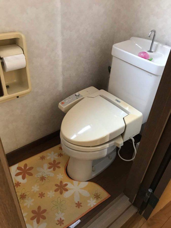 階段下トイレは、狭く段差があり開き戸のため使いにくかった。